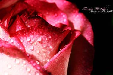 :: SWEETHEART :: by sweetyblood