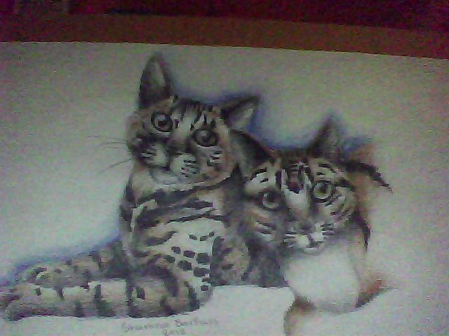 kitty friends by cuteart13
