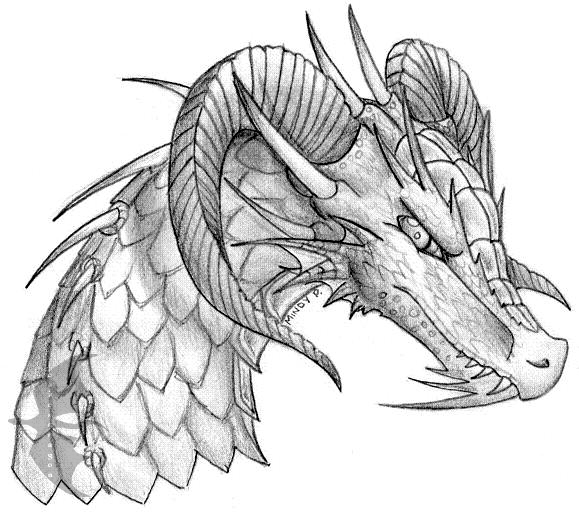 Dragon head sketch by oakendragon
