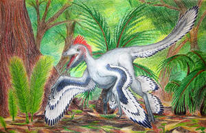Anchiornis huxleyi by oakendragon