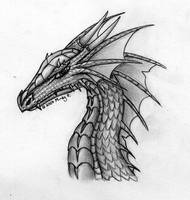 001 . Dragon Head Sketch by oakendragon