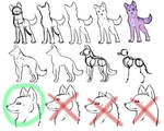 How-To-Draw Wolves Part 1