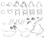How-To-Draw Wolves Part 2