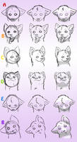 How-To-Draw Wolves Part 4