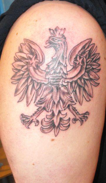 Tattoo images by marlene wiggins amorphoto for Bradley wiggins tattoo sleeve