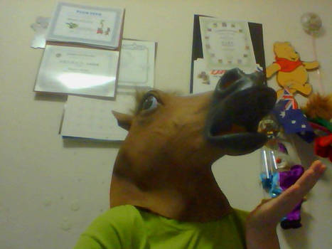 There is only horse now