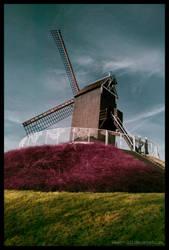 Bruges by rawrrrr-321