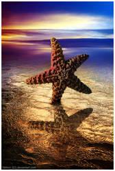 Starfush by rawrrrr-321