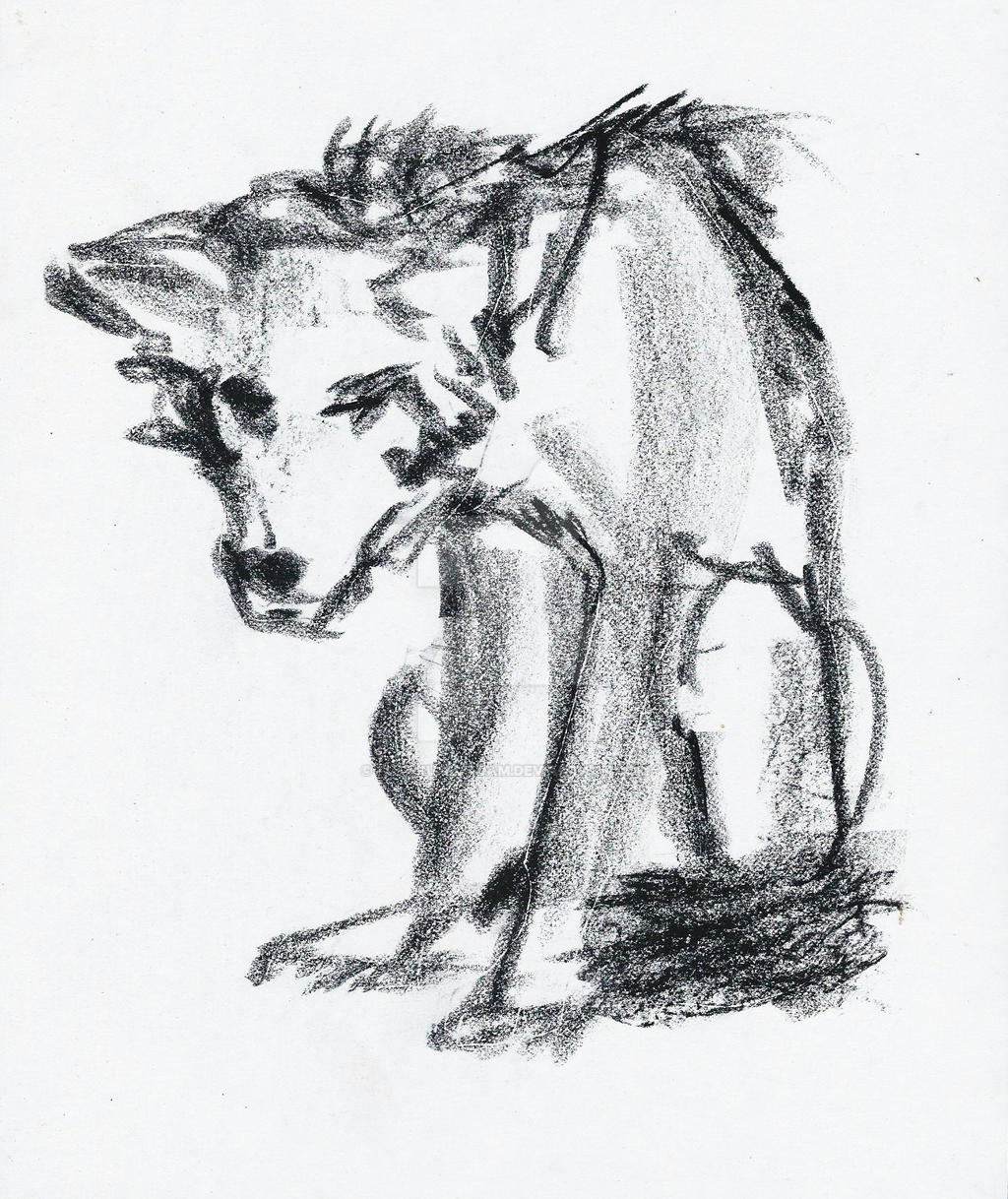 Wolf : rough by Futurum-Undam
