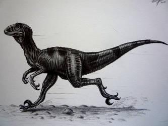 Deinonychus by Schinkenspicker