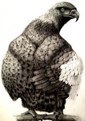 Pencil Birdy by Schinkenspicker