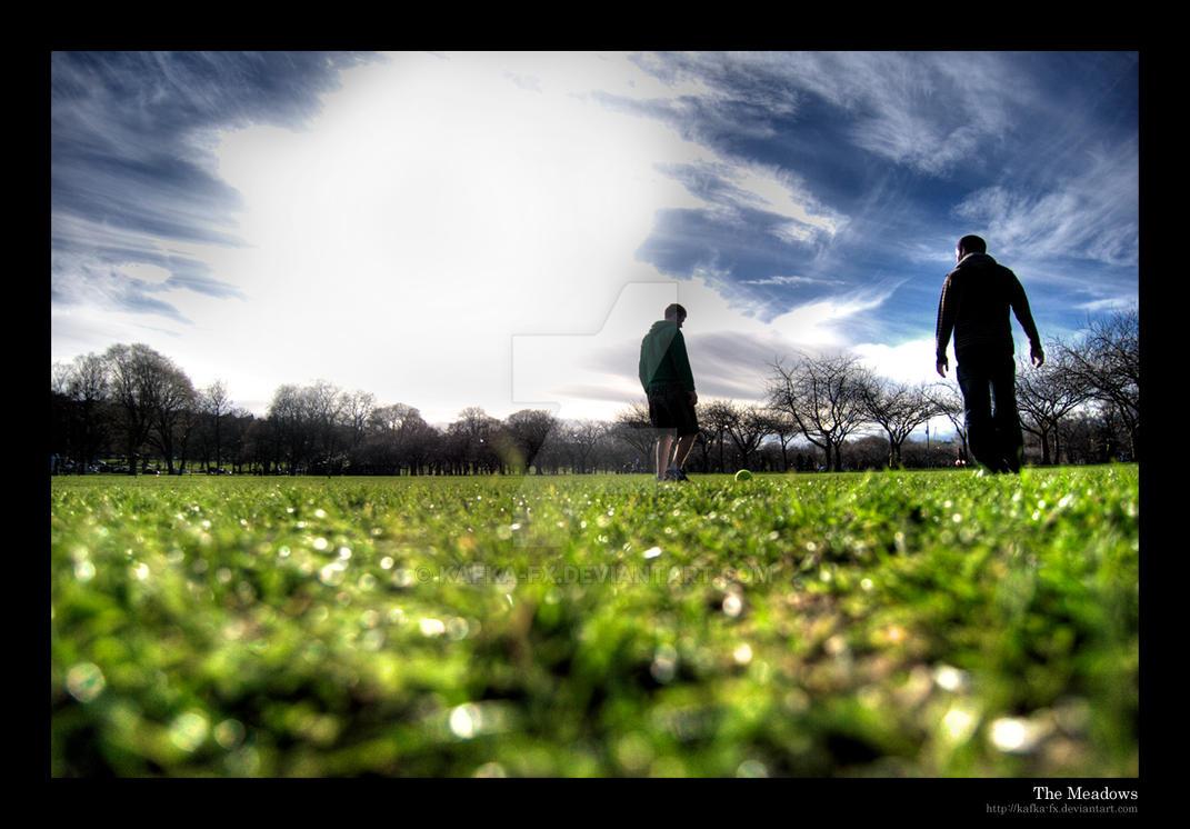 The Meadows by KaFKa-FX