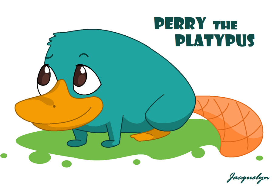 Perry The Platypus by Jackie-lyn on DeviantArt
