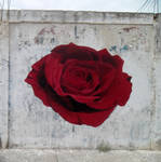 and the Rose -Street Art from the Little Prince -