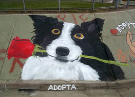 ADOPT - Street Art for the stray dogs by Johnny-Aza