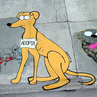 Adopt - Adopta / Street Art by Johnny-Aza