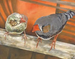 Birdies! by rennyren