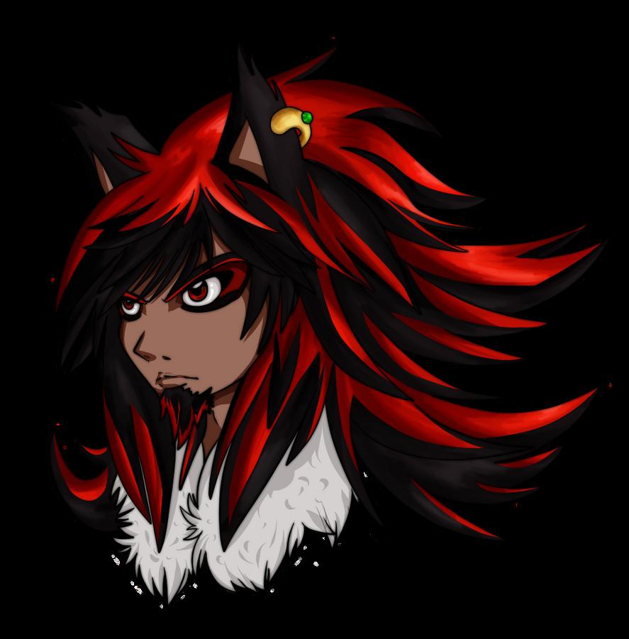 Shadow Redesigned by Hylian-Rinku