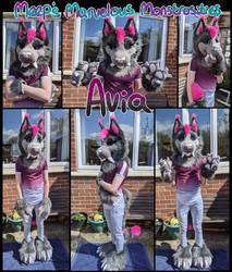 Avia Saber Cat partial