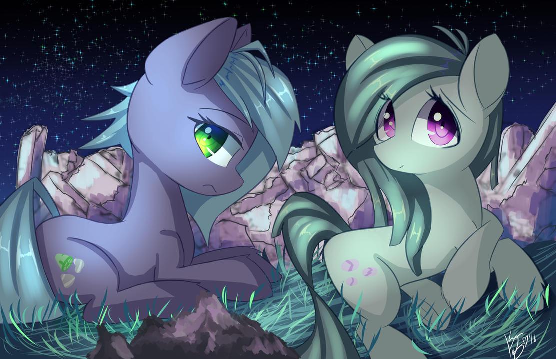 Ponies by kawaiipony2
