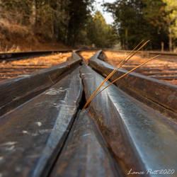Railroad Palouse