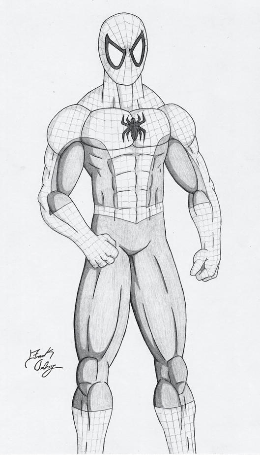 Spider man pencil drawing by dsx100