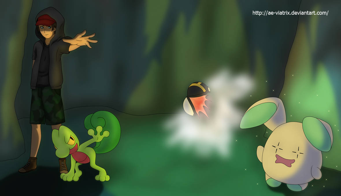 Treeko and Whismur by AusLove