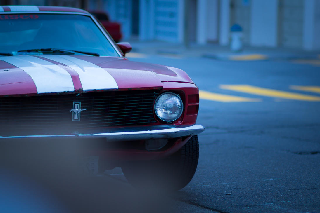 Mustang morning by crag137