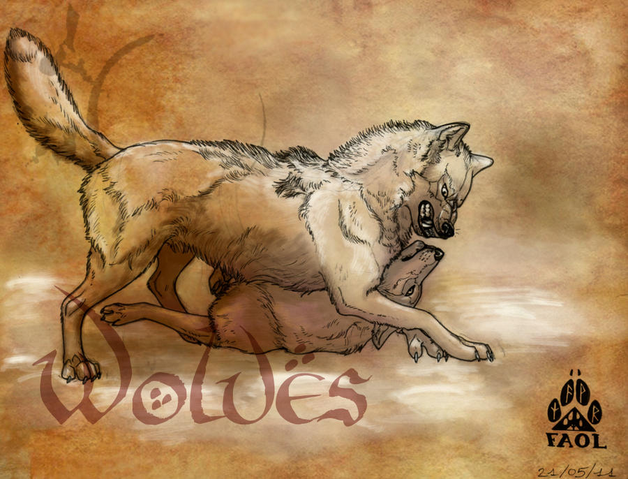 Wolves by Faol-bigbadwolf