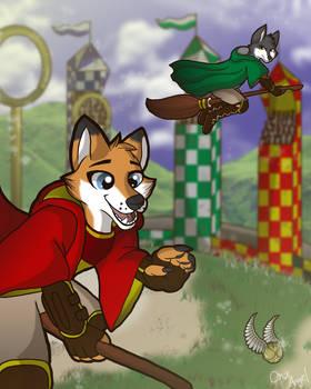 Furtastic Quidditch