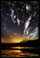 day versus night by adypetrisor