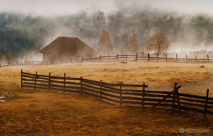 Foggy morning I by adypetrisor