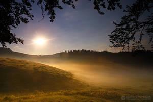 Foggy morning 14 by adypetrisor
