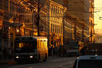 Cluj in the autumn light V