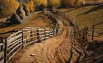 Autumn colors in Apuseni Mountains 25