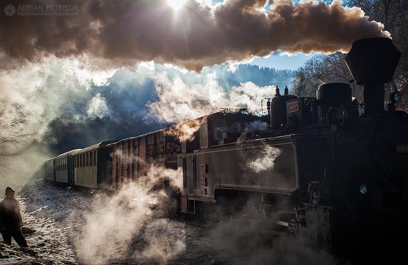 Steam train in Maramures 03