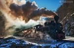 Steam train in Maramures 05