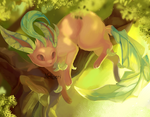 Leafeon - in the shade of the tree