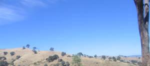 Summer Panorama
