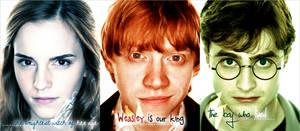 HP: Trio