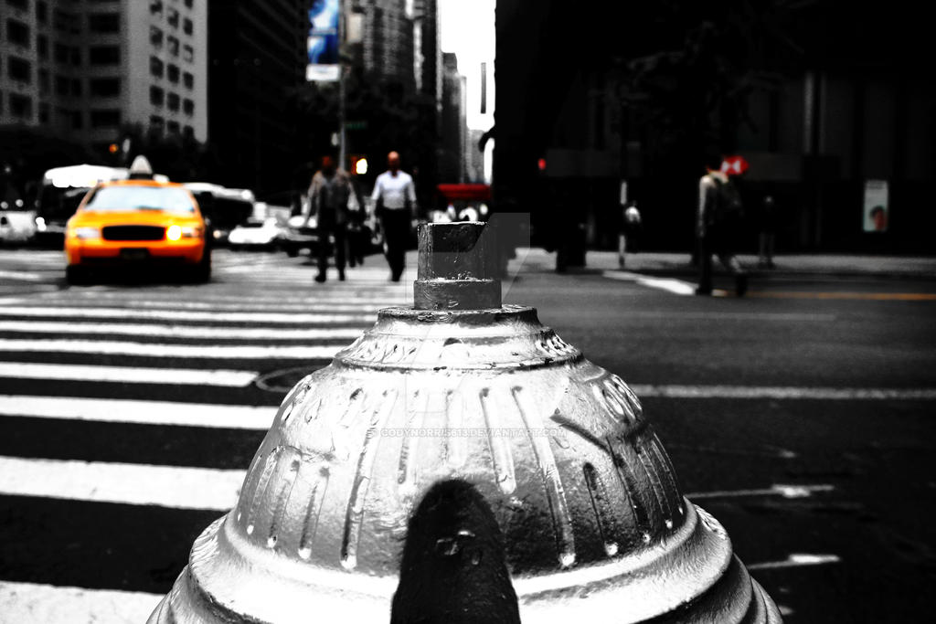 Manhattan Walk Fire Hydrant by CodyNorris613