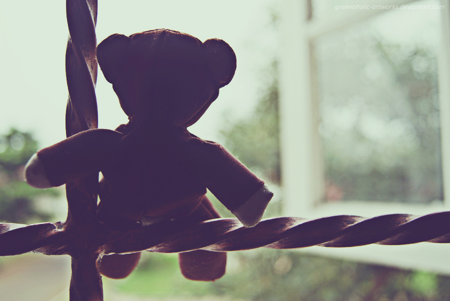 Image result for teddy bear alone