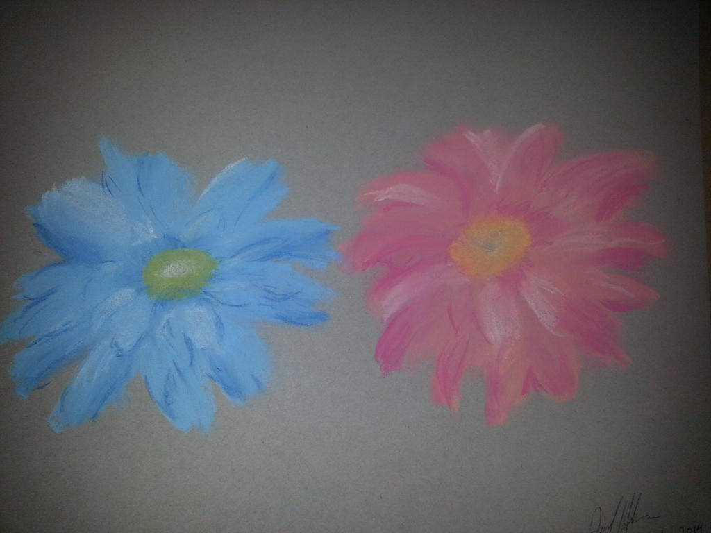 Daisies blue and pink by workofaart