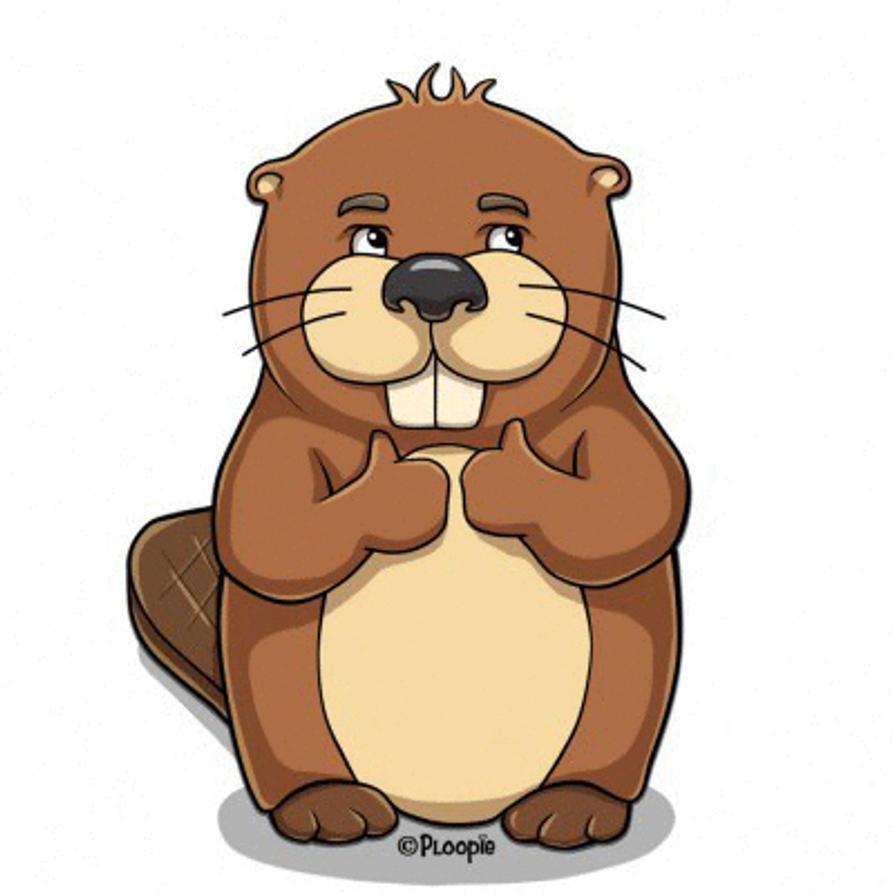 Beaver By Ploopie On Deviantart