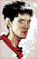 Merlin by allegator