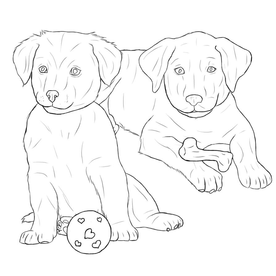 labrador puppy coloring pages | Golden Retriever Face Coloring Pages