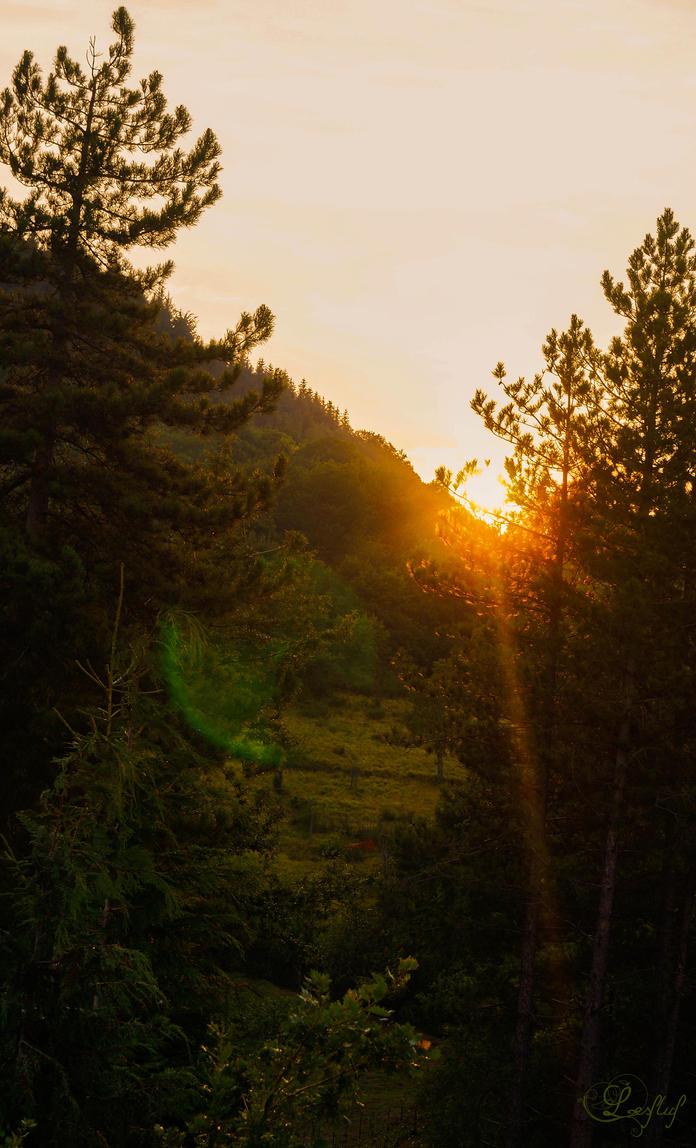 Sunset 1 by DiroPetra