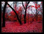 the New Autumn Fantasy