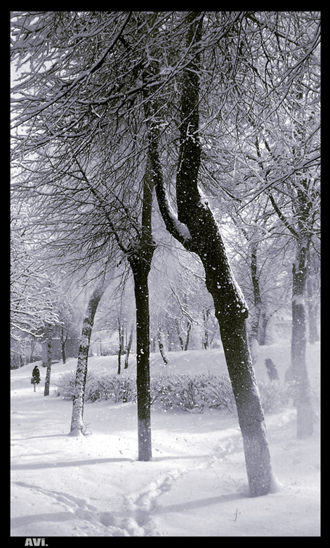 Winter by anothervision - K�� *