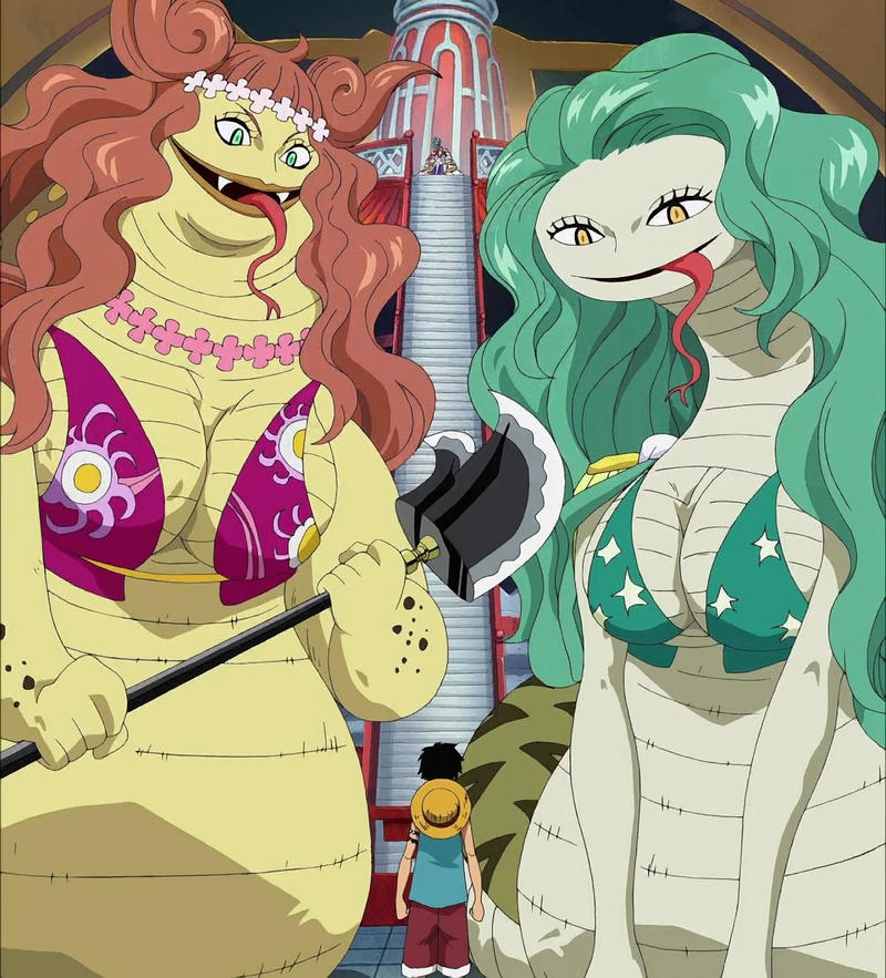 Gorgon Sisters One Piece one has anaconda df and other
